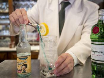 Gin-tonic-paoletti